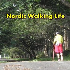 仕事とノルディックウォーキングの共通点